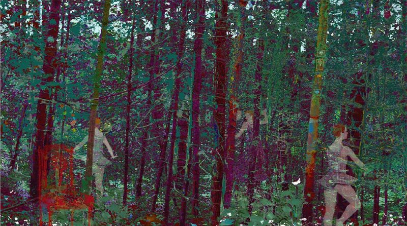 "The Secret Forest, archival inkjet, 24"" x 37"", (image 17"" x 30""), Edition 100"